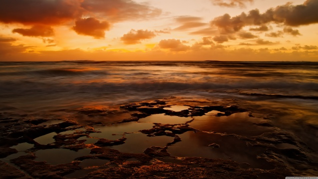 Beach: Tide Pools HD Wallpaper